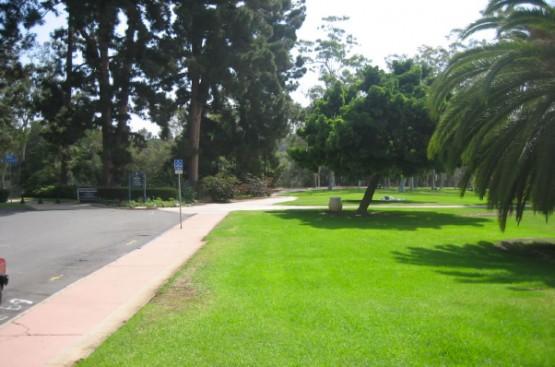 upas-street